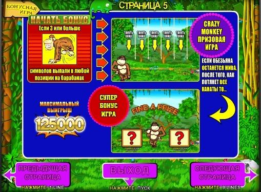 Bonus game of slot Crazy Monkey