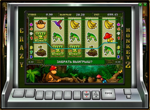 The reels of slot Crazy Monkey 2